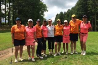 1ère Division de Ligue mid-amateur dames 1